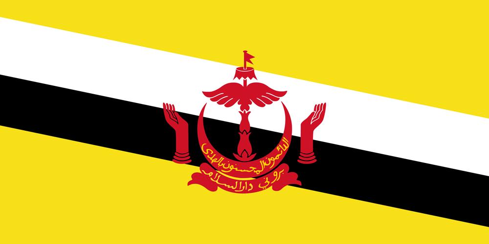 Brunei Darussalam scholarship
